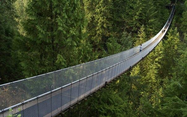 Маленькая притча: узкий мост и осознанность